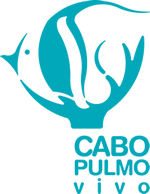 Cabo Pulmo Vivo protects Cabo Pulmo National Park